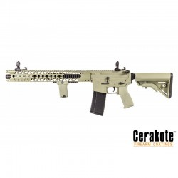 Evolution-Dytac LA M4 Carbine Foliage Green Lone Star Edition